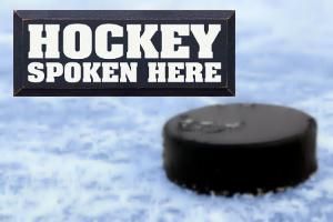 hockeylanding.jpg